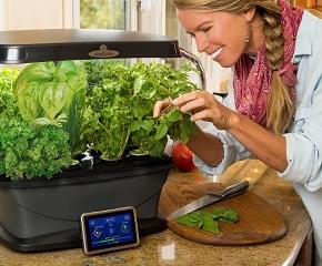 Miracle-Gro-AeroGarden-Bounty-with-Gourmet-Herb-Seed-Pod-Kit