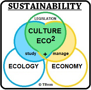 sustainability-ecoculture-eco-squared
